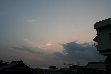 IMG_8193.jpg